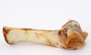t-bone-gristle