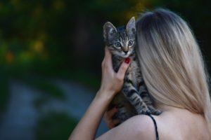woman-carrying-tabby-kitten
