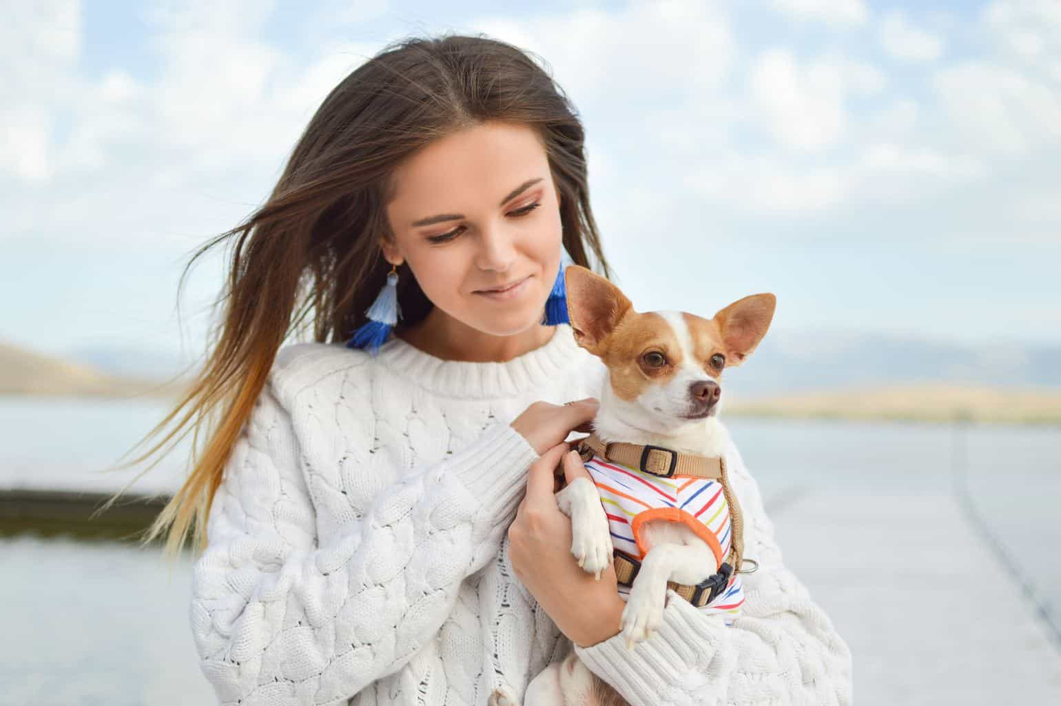 beautiful woman holding a chihuahua